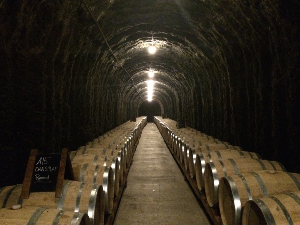 Cave in Antica winery, Napa Valley