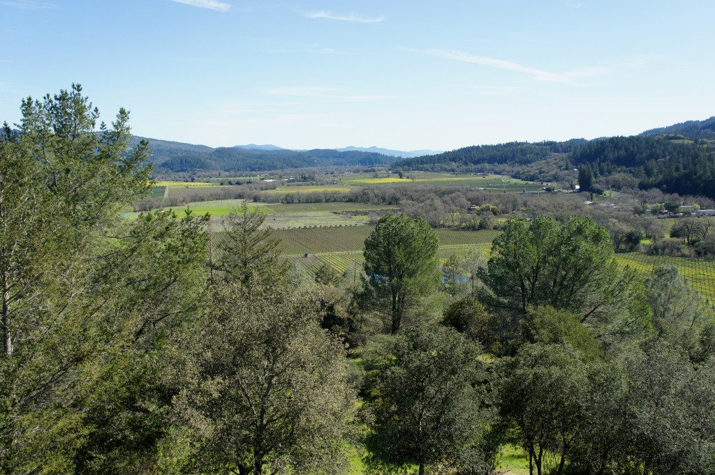 Sterling Vineyards, Napa Valley, views