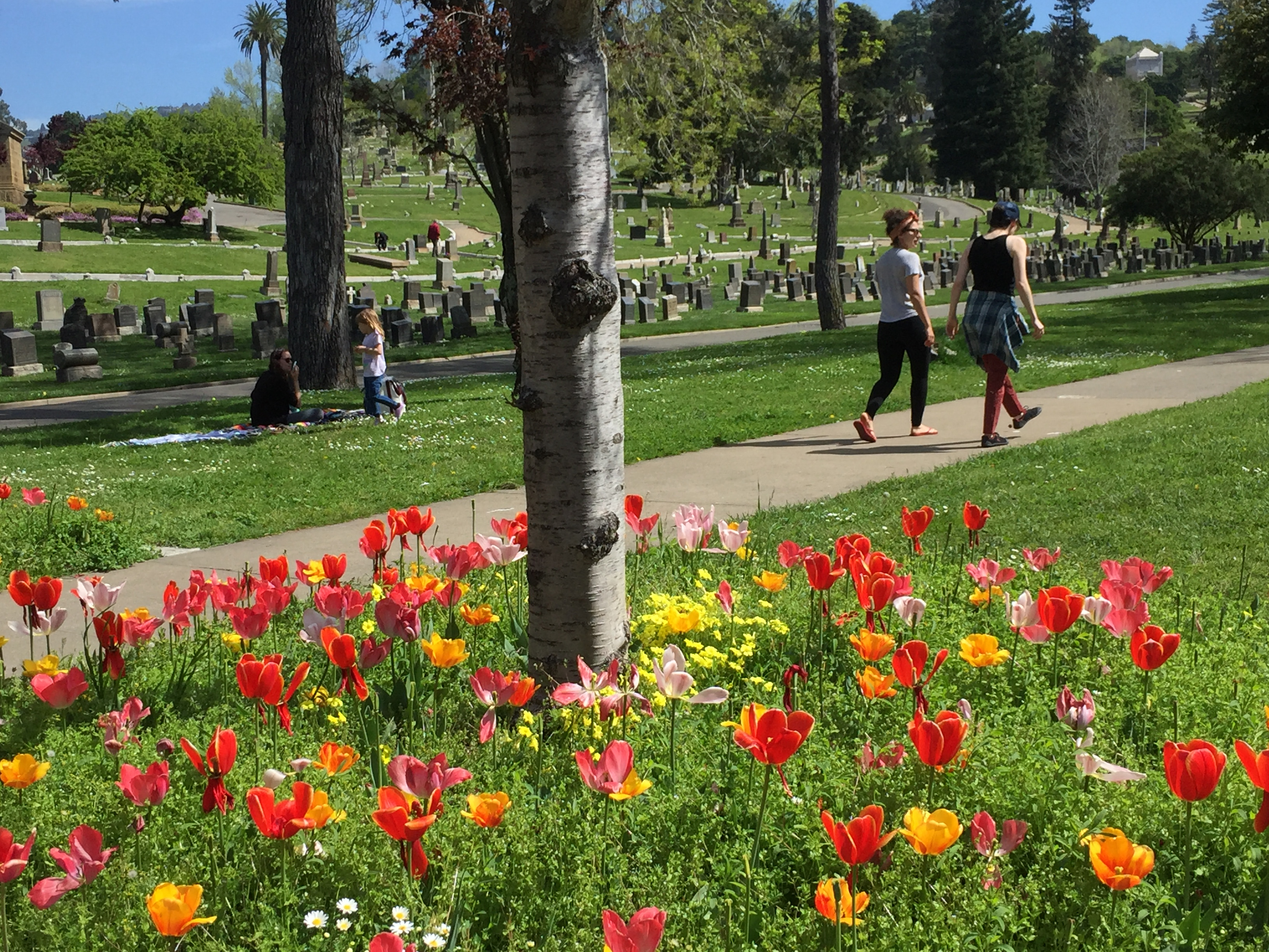 Mountain View Cemetery in Oakland